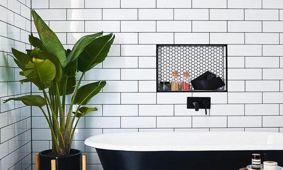 Reglas para decorar un baño con plantas| Todomueblesdebano